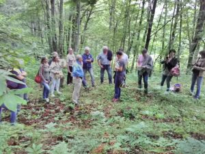 riconquista territoriale silvicola agricola foto
