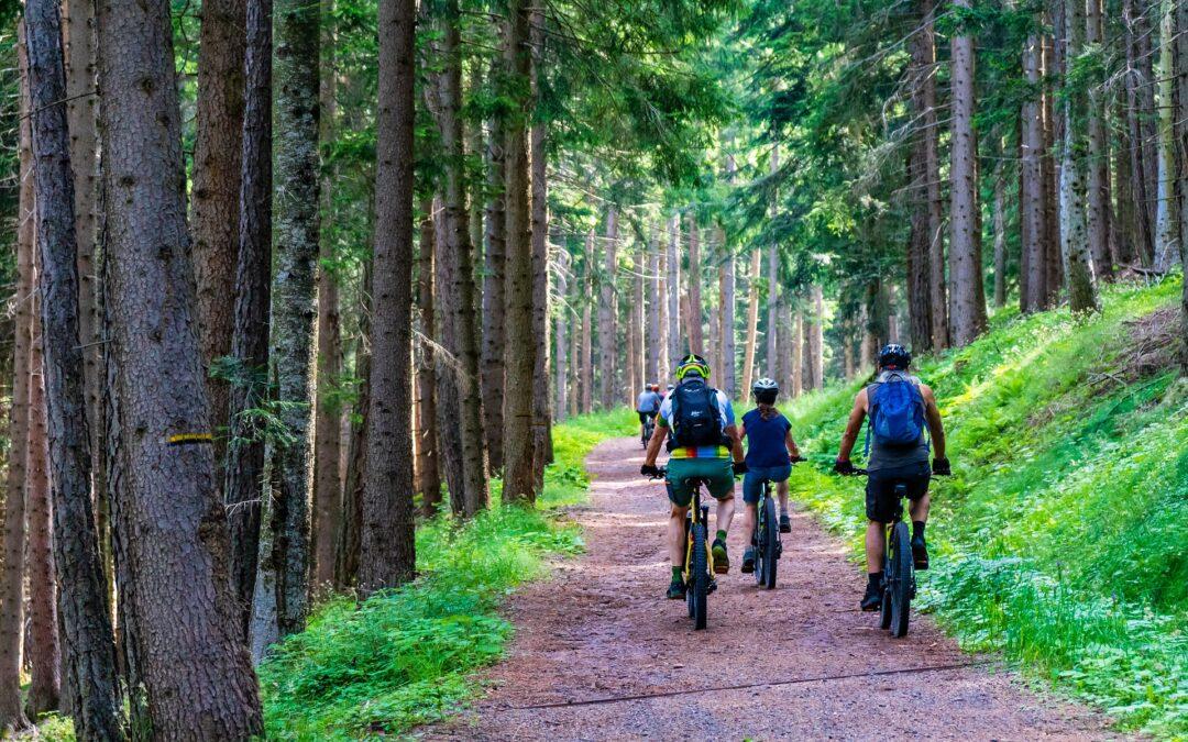 Mobilità sostenibile: eventi prova e-bike per lavoratori e operatori turistici